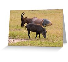 Topi and african warthog Greeting Card