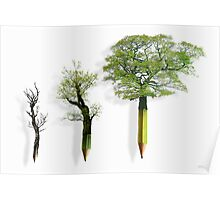 Sustainable Woodland Poster