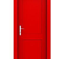 red door by jyotiranjan mishra