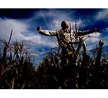 Scarecrow Fields Photographic Print