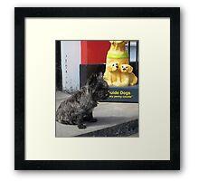 Guard Scottie Framed Print