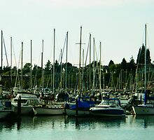Harbor Boats by kchase