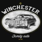 Winchester auto by TeeKetch