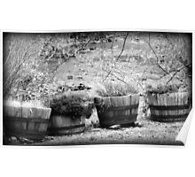 Black and White Barrels rustic barrel planters Poster