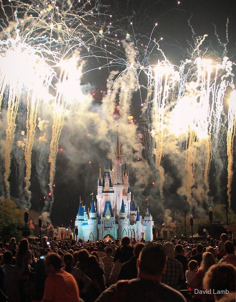 The Magic Kingdom at Night by David Lamb