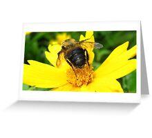 Golden Pollen Greeting Card