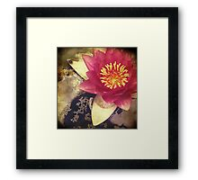 Lotus III Framed Print