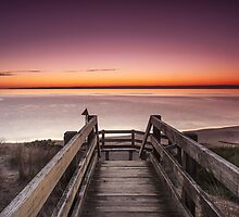 Boardwalk to Paradise by Shari Mattox