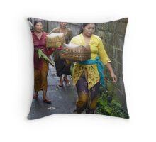 3_01_13_P1230794cr Throw Pillow