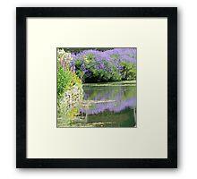 Summer Lavendar at Bibury Framed Print