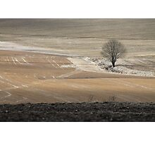 Farm land. Spring time. Photographic Print