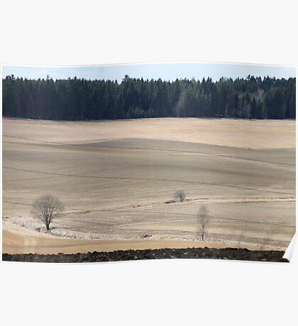 Farm land. Spring time. Norway. Poster