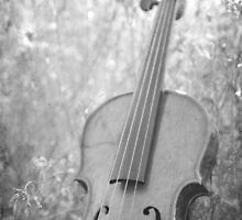 Violin Nature by Kimberose