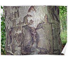 Tree Grafiti Poster