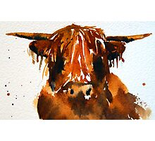 Shaggy Mook in watercolour Photographic Print
