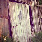 Broken Barn Door No. 2 rustic farm decor country decor rural decay by jemvistaprint