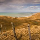 Coastal Farm - NZ by Lachlan Kent