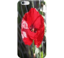 Vector Style Poppy With Natural Background  iPhone Case/Skin