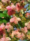 Rococo Blossoms by RC deWinter