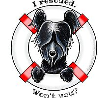 Rescued Skye Terrier by offleashart