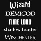 Fandoms: Wizard, Demigod, Time Lord, Shadow Hunter, Winchester by Fiona Boyle