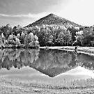 Mountain Reflection by Lisa G. Putman