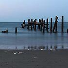 Happisburgh Beach Groynes by Avril Harris