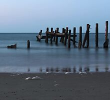 Happisburgh Beach Groynes by Avril Harris