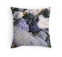 Shield Stone Throw Pillow