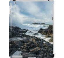 Crash iPad Case/Skin