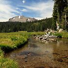 Mount Lassen From Kings Creek by James Eddy