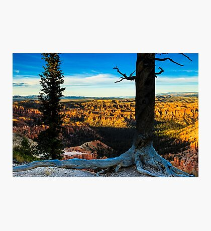 Bryce Canyon at Sunset Photographic Print
