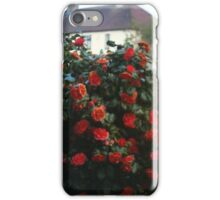 garden bush iPhone Case/Skin