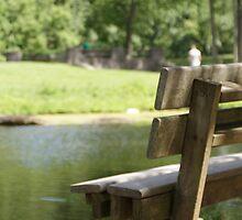 Peace at George Rogers Clark Park by Renee Ellis