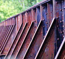 Rusty Rails by Renee Ellis