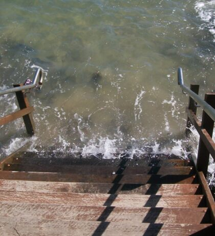 High Tide Sticker