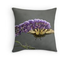 Backlit Monarch Throw Pillow