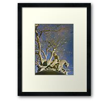 A Reflection of Reality Framed Print