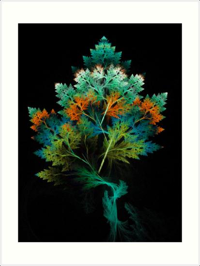 Pine by Virginia N. Fred