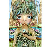Eucalypt Princess Photographic Print