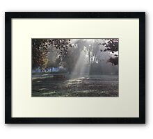 Relaxation Rays Framed Print