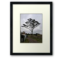 Helms winery Framed Print