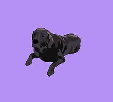 Purple Chocolate Lab by pupsofnyc