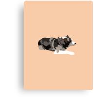 Peach Husky Canvas Print