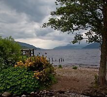 Dores by diggle