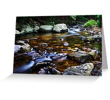 A Trouting Brook Greeting Card