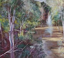 The Traawool Creek in Flood by Lynda Robinson