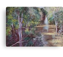 The Traawool Creek in Flood Canvas Print