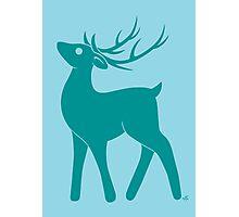 Teal Deer - Too Long Didn't Read Photographic Print