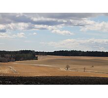 Rural landscape. Ås, Akershus, Norway. Spring time. Photographic Print